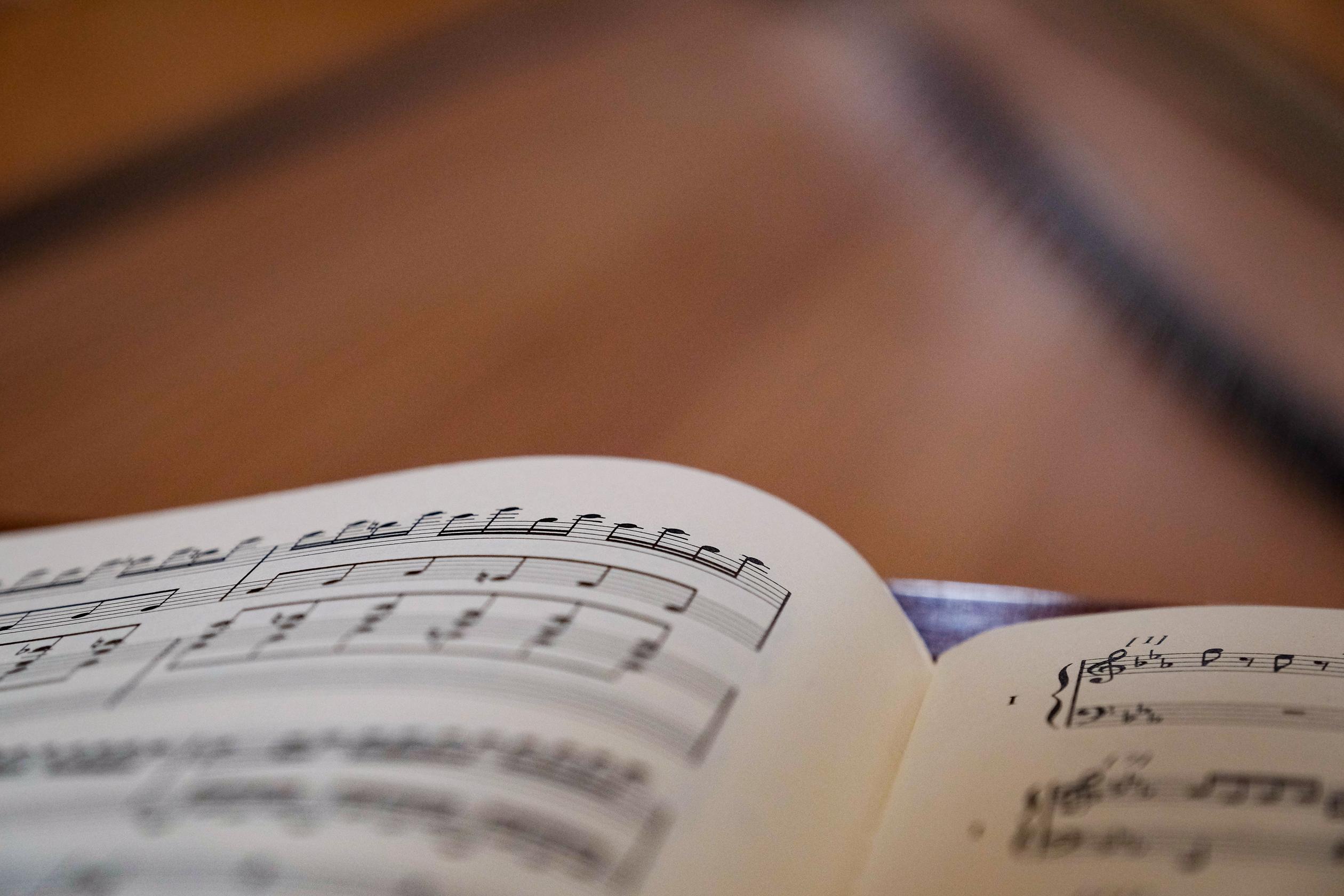Haydneum - publikációk
